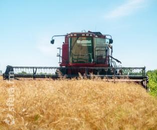 В стране началась уборка первых озимых зерновых