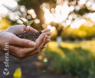 Агрохолдинги и эксперты АПК обсудят введение экспортных пошлин и развитие российского растениеводства
