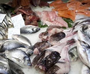 Вице-премьер поручила разработать условия для проведения «рыбных бирж»