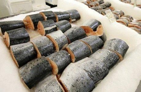 Российская рыба: реальность или утопия?