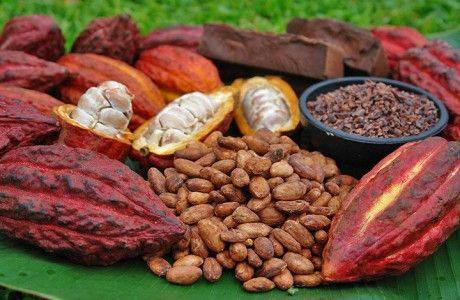 Россия подписала в ООН международное соглашение по какао