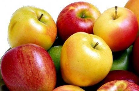 Беларусь не может обойтись без польских яблок?