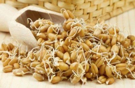 Муку из эмбриональных зародышей пшеницы произвели в Алтайском крае
