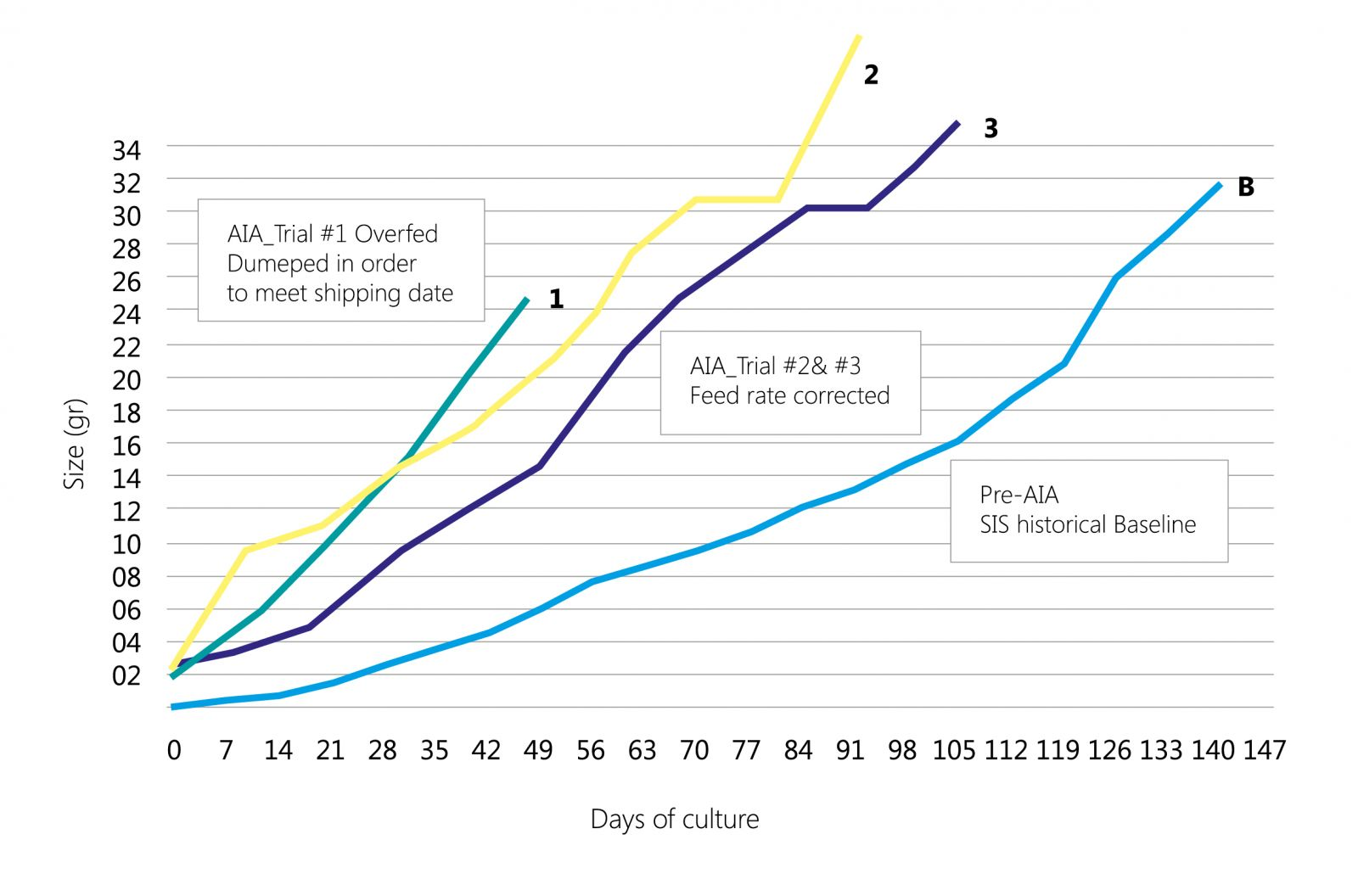 К вопросу скорости роста морской креветки L