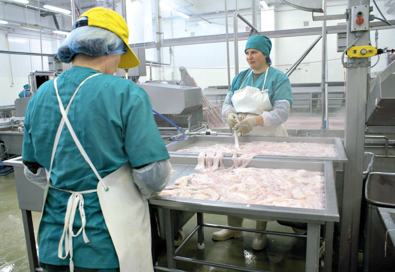 Поздравления работников рыбного производства