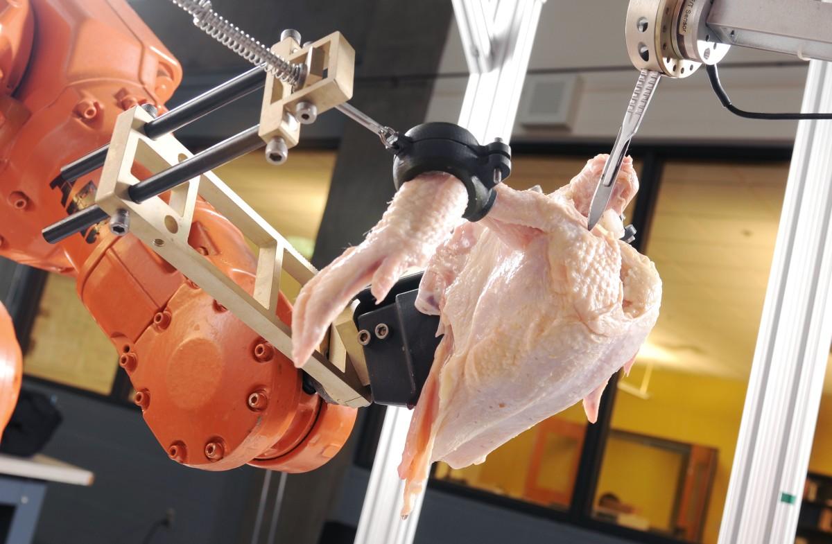 Обвалки грудок птицы на оборудовании сторк схема
